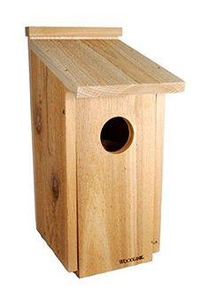 Woodlink H Tan Wood Owls Nesting Box Bird House at Lowe's. This sturdy attractive cedar nesting box is designed specifically for owls and kestrels. Recommended placement is near open woods or edge of wooded lots Bat House Plans, Bird House Kits, Owl House, Owl Nest Box, Owl Box, Nocturnal Birds, What Is A Bird, Shade Grass, Bird Types