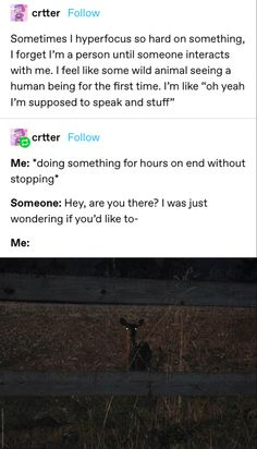 Dankest Memes, Funny Memes, Jokes, Funny Cute, Hilarious, Funny Tumblr Posts, I Can Relate, Summary, Adhd