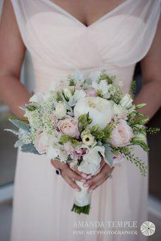 Bermuda Photographer - Amanda Temple: Petals