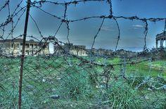 #ivoMonti #lagoVarano #sanNicolaImbuti #gargano
