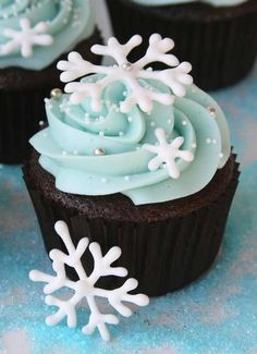 The snowflakes are so elegant and pretty!