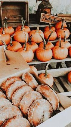 Autumn Aesthetic, Autumn Cozy, Fall Pictures, Fall Photos, Happy Fall Y'all, Fall Baby, Hello Autumn, Autumn Inspiration, Fall Season