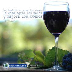Los hombres son como los vinos: la edad agria los malos y mejora los buenos. Cicerón. http://selvv.com/dilacion/