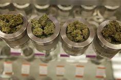 Why more states are considering marijuana legalization - CSMonitor.com