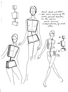 113 Best Figure Drawing: BASICS images in 2019 | Sketches