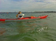 Kayak Advice for beginners