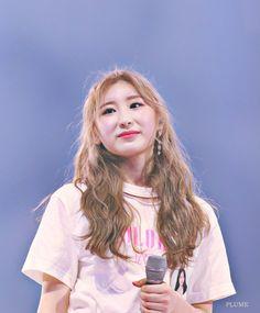 Kpop Girl Groups, Kpop Girls, Yongin, Bias Kpop, Gfriend Sowon, Japanese Girl Group, K Idol, The Wiz, Mamamoo