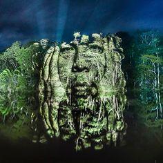 Sur UFUNK : Amazonia – Du street art lumineux en pleine forêt Amazonienne ! Un superbe projet de Philippe Echaroux (@philippe.echaroux) #art #streetart #lightpainting #photography #portrait #nature #inspiration #ufunk