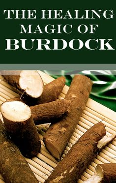Psoriasis Free - 5 Amazing Health Benefits of Burdock. This is a long list of healing herbs. - Professors Predicted I Would Die With Psoriasis. But Contrarily to their Prediction, I Cured Psoriasis Easily, Permanently & In Just 3 Days. Natural Health Remedies, Natural Cures, Natural Healing, Herbal Remedies, Home Remedies, Healing Herbs, Medicinal Herbs, Natural Medicine, Herbal Medicine