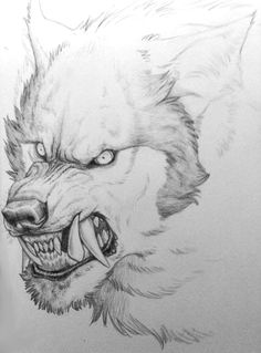 Wuff face by ManicShadow on deviantART Pencil Art Drawings, Cute Drawings, Drawing Sketches, Animal Sketches, Animal Drawings, Wolf Sketch, Wolf Images, Werewolf Art, Wolf Tattoo Design