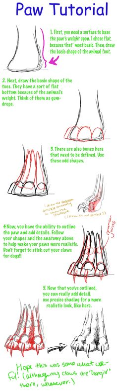 Paw Tutorial by earthsea-23.deviantart.com on @DeviantArt