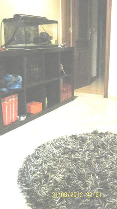 expedit and aquarim on entry