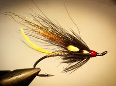 Noname Salmonfly 7999 #6