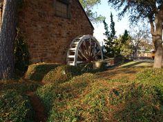 Water Wheel | Glendine of Dallas