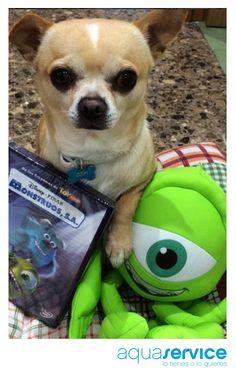 ¡Nos encanta! María, una de las ganadoras de nuestro sorteo Aquaservice de Monstruos, nos envía esta divertida foto del regalo con su pequeño Copi.