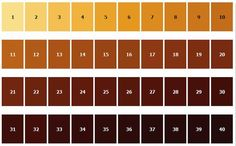 How Does Beer Gets Its Color? This is a question that has been floating around my home the past week as my son tried his hand at making beer for the first time. I can't wait to taste his home brewed beer. This is the SRM Scale