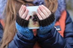 Brown Fingerless Gloves  Brown Cozy Mittens  от Giftsandpatterns