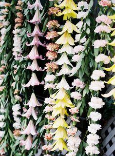 pretty These will be my flower arrangements! Wall of flowers A Flowers arrangeme. Hanging Flowers, Flower Garlands, Beautiful Flowers, Real Flowers, Floral Garland, Cascading Flowers, Flower Backdrop, Flower Wall, My Flower