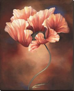 Poppy II Stretched Canvas Print by Louise Montillio at Art.com