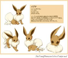 Ori Eevee Normal
