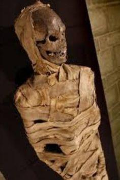 Mummification Process, Ancient Egypt Pharaohs, Canopic Jars, Liquid Resin, Egypt Mummy, Egyptian Mummies, Anubis, Head And Neck