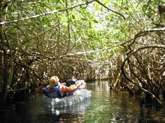 riviera maya tube - Google Search