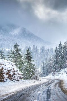 🇨🇭 The road to St Moritz after a snowstorm (Switzerland) by Coco Moni ❄️cr. Winter Szenen, Winter Magic, Most Romantic Places, Beautiful Places, Carpathian Forest, Snow Scenes, Winter Beauty, Jolie Photo, Winter Landscape