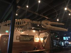 Whale skeleton -  || Form & Function Commercial Architecture || Asheville NC
