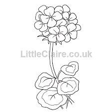 Geranium artist spirit pinterest stitching patterns for Gerri the geranium coloring page