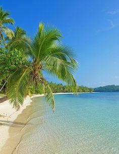 Tropical Beaches With Palm Trees Jamaica Vacation, Vacation Trips, Vacation Spots, Hawaii Honeymoon, Beach Vacations, Romantic Vacations, Big Island Hawaii, Island Beach, Tropical Beach Resorts