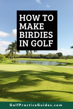 Learn how golfers make birdies and why you aren't making as many birdies as you would like to. See our best golf tips in this article by GolfPracticeGuides.com #golf #golftips