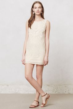 Blanched Lace Shift - Anthropologie.com