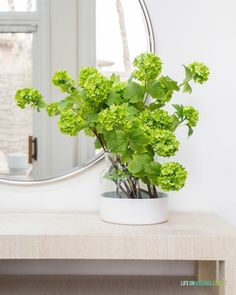 2020 Spring Home Tour / Greenery stems in a white vase by a round mirror.