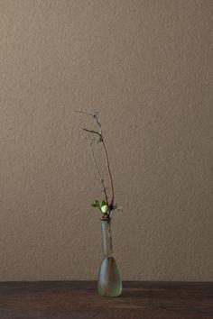 2012年1月29日(日)      老いと若さ。冬と春。季節の循環であり、生命の循環でもあります。  花=裏白(ウラジロ)、クリスマスローズ  器=ローマングラス瓶(ローマ時代)