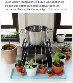 If you're going away on vacation, place a pot on a step stool on your counter your succulents around the step stool, wet & run strings from the pot to the plants (tuck into each pot), fill the pot with water & the water will  leach down to the plants.: