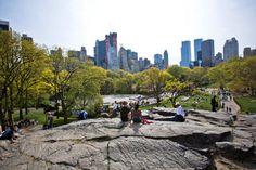 Resting on rocks in Central Park