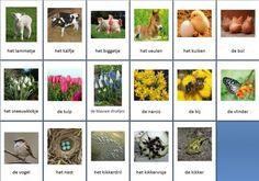 Grote themakaarten voor het thema lente, we hebben voor vele thema's grote en kleine themakaarten op de website van Juf Milou. Montessori, Seasons, School, Spring, Flowers, Crafts, Website, Logo, Gardens