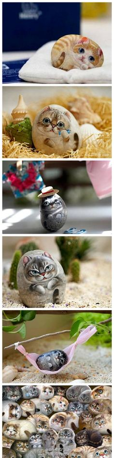 cute cats and kittens painted on rocks :)