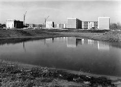 Zápor-tó 1968 nyarán  lázasan készül az Olajos utca teljes hossza valamint a Sólyom utca 1. és balról a Csorba utca vége. A víz és az épületek között felépített egykori óvodának valamint a Zápor kerti általános iskolának még a helye sincs eldózerolva. Sőt a tó sem abban a mederben van, amiben ma ismerjük. (facebook.com)