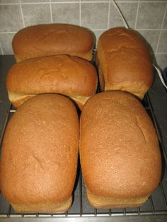 Baking Whole Wheat Bread From Scratch