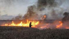KKL processará o Hamas pelos danos ambientais na área adjacente a Gaza