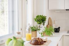 Bambula: BoKlok Niki Cumulus - the kitchen Kitchen Dining, Kitchen Decor, The Hamptons, Interior And Exterior, Ikea, House Design, Kitchens, Interiors, Breakfast