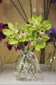 Orchids (available only in stores) Click image to see weekly ad #MeijerDormDecor #DormDecor