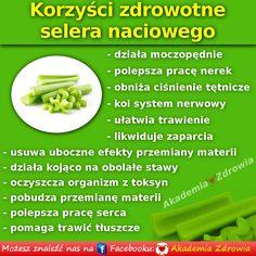 Korzyści zdrowotne selera naciowego - Zdrowe poradniki Superfoods, Celery, Natural Remedies, Vegetables, Health, Health Care, Super Foods, Vegetable Recipes, Natural Home Remedies