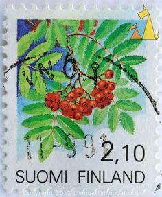 European Rowan, Suomi, Finland, stamp, plant, flower, 2.10, Sorbus aucuparia