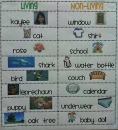 Living and Non-Living T-Chart#Repin By:Pinterest++ for iPad#