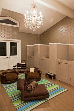 Dream dog room! my future dogs will have this room