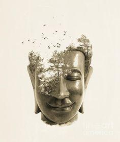 buddha non attachement