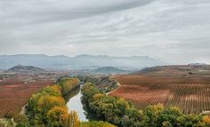 Mountains Sierra de Cantabria and Ebro river are very important to understand microclimate of Rioja wine region #turism #winetours #travel #wine #winelover #turismo #enoturismo #experience #winetastelovers #riojawine #gastronomía #visitSpain #vino #viaje#tapas #winetasting #instariojawine #gastronomy #instawinetours #winecountry #wineries #worldplaces #winetrip #winetravel#viajar #grapevines #winetourism #wineregion #lp