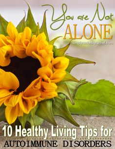 My heart goes out to individuals with Autoimmune Disorders. I understand the frustration, confusion, and self-doubt that can accompany these conditions because of my own personal struggles. In this article I share 10 healthy living tips for anyone with an autoimmune disorder.  http://www.groundedandsurrounded.com/healthy-tips-autoimmune-disorders/